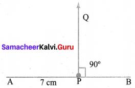 Samacheer Kalvi 6th Maths Solutions Term 2 Chapter 4 Geometry Ex 4.2 Q1