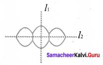 Samacheer Kalvi 6th Maths Solutions Term 3 Chapter 4 Geometry Ex 4.3 7