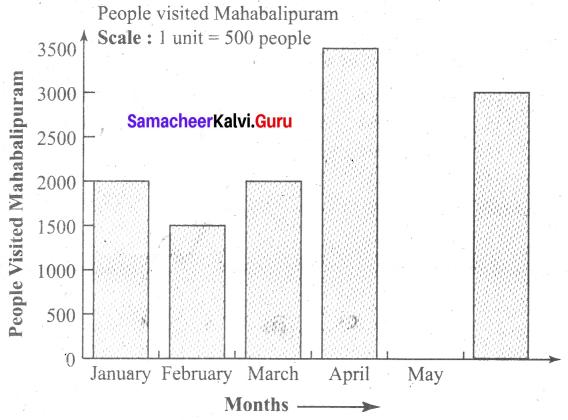 Samacheer Kalvi 6th Maths Term 1 Chapter 5 Statistics Additional Questions 3 Q3