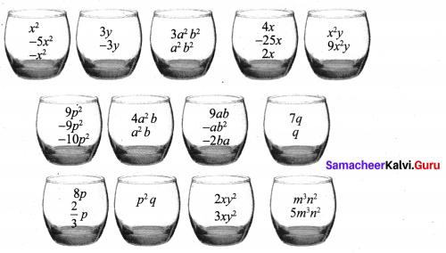 Samacheer Kalvi 8th Maths Term 1 Chapter 3 Algebra Intext Questions 7