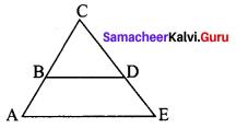 Samacheer Kalvi 8th Maths Term 1 Chapter 4 Geometry Ex 4.1 15