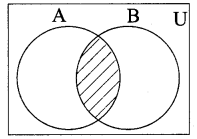Kalvi Guru 9th Maths Ex 1.3
