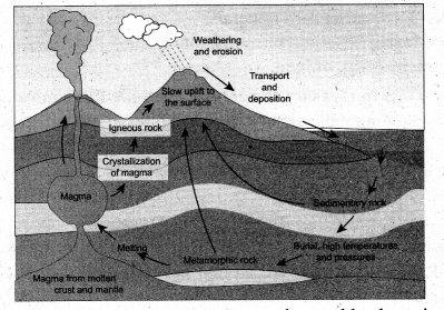 Lithosphere 1 Endogenic Processes Answers Samacheer Kalvi 9th Social Science Geography