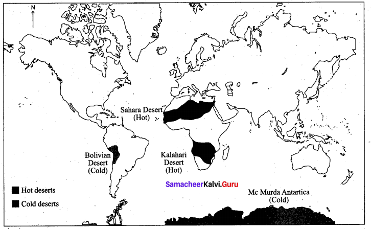 Lithosphere Exogenic Processes Samacheer Kalvi 9th Social Science Geography Solutions Chapter 2