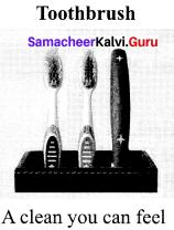 Samacheer Kalvi 10th English Solutions Prose Chapter 3 Empowered Women Navigating The World 19