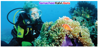 English 10th Guide Samacheer Kalvi