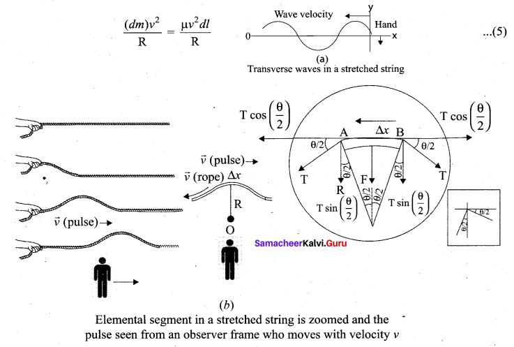 Samacheer Kalvi 11th Physics Solutions Chapter 11 Waves 27