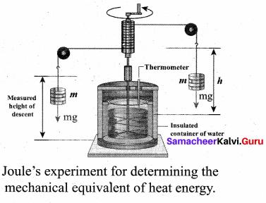 Samacheer Kalvi 11th Physics Solutions Chapter 8 Heat and Thermodynamics 49