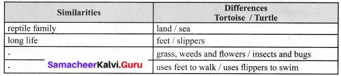 Samacheer Kalvi 6th English Solutions Term 1 Prose Chapter 1 Sea Turtles 12