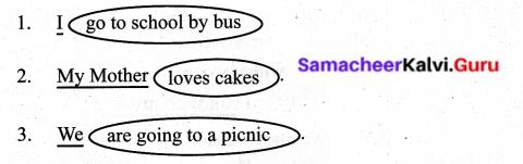 Samacheer Kalvi 6th English Solutions Term 1 Prose Chapter 1 Sea Turtles 14