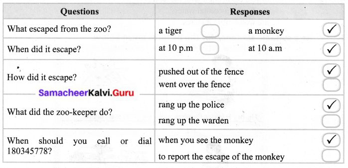 Samacheer Kalvi 6th English Sea Turtle Lesson Questions And Answers