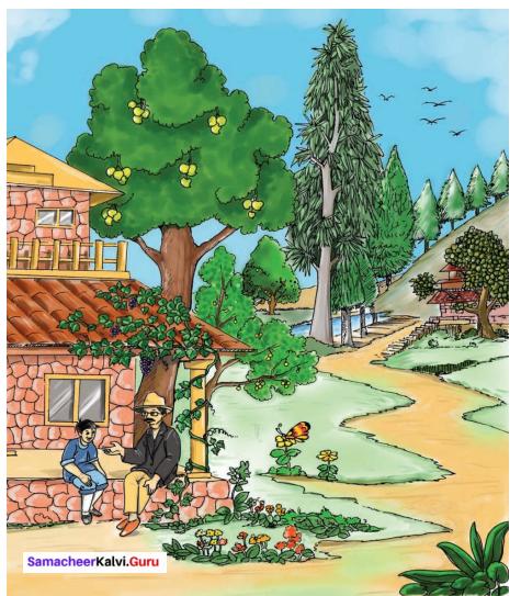 When The Trees Walked 6th Standard Samacheer Kalvi