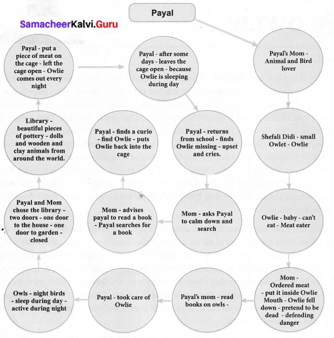 Owlie Book Back Answers Samacheer Kalvi 6th English