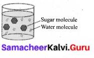 Samacheer Kalvi 6th Science Solutions Term 1 Chapter 3 Matter Around Us 12