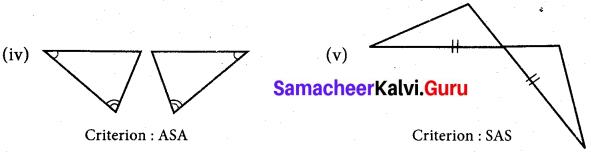 Samacheer Kalvi 7th Maths Solutions Term 2 Chapter 4 Geometry 4.2 12