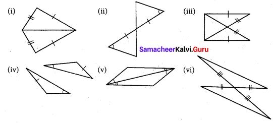 Samacheer Kalvi 7th Maths Solutions Term 2 Chapter 4 Geometry 4.2 18