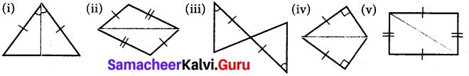 Samacheer Kalvi 7th Maths Solutions Term 2 Chapter 4 Geometry 4.2 5