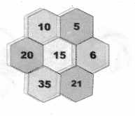 Samacheer Kalvi 7th Maths Solutions Term 2 Chapter 5 Information Processing Ex 5.3 11