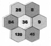 Samacheer Kalvi 7th Maths Solutions Term 2 Chapter 5 Information Processing Ex 5.3 12