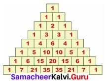 Samacheer Kalvi 7th Maths Solutions Term 2 Chapter 5 Information Processing Ex 5.3 2