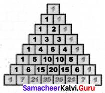 Samacheer Kalvi 7th Maths Solutions Term 2 Chapter 5 Information Processing Intext Questions 14