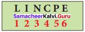 Samacheer Kalvi 8th Maths Solutions Term 2 Chapter 4 Information Processing Ex 4.3 2