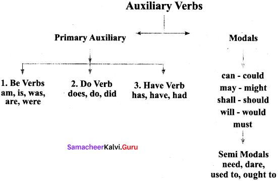 Samacheer Kalvi 9th English Grammar Auxiliaries Verbs 1