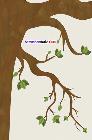 Killing A Tree Question Answer Samacheer Kalvi 9th English
