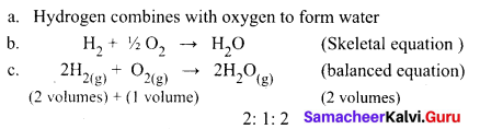 Samacheer Kalvi 9th Science Solutions Chapter 11 Atomic Structure 4