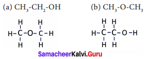 Samacheer Kalvi 9th Science Solutions Chapter 15 Carbon and its Compounds 3