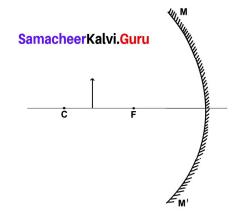 Chapter 6 Light Samacheer Kalvi 9th