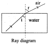 Samacheer Kalvi Guru 9th Science Chapter 6