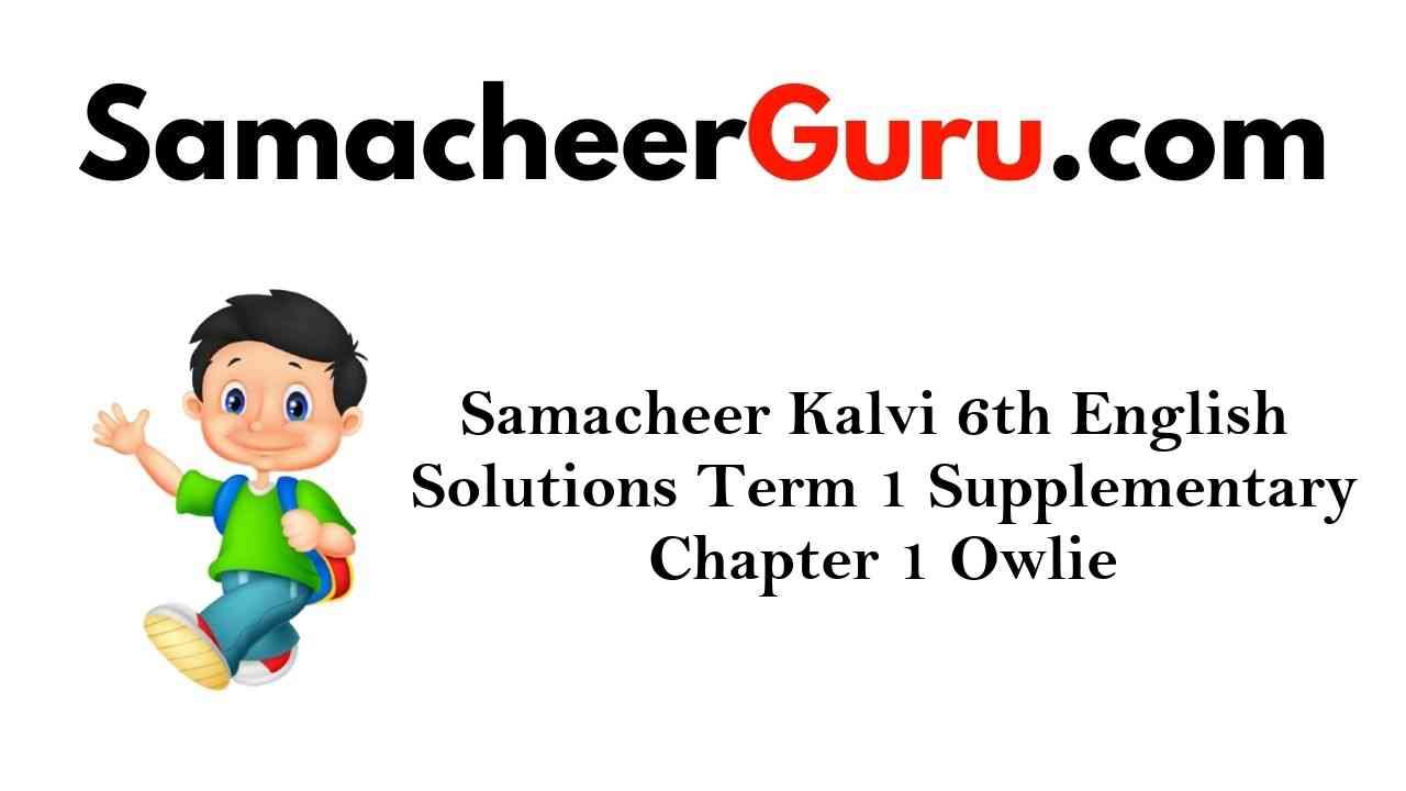 Samacheer Kalvi 6th English Solutions Term 1 Supplementary Chapter 1 Owlie