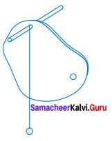 Samacheer Kalvi Guru 7th Science Book Back Answers