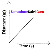 Force And Motion 7th Standard Samacheer Kalvi 7th Science Solutions