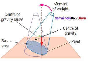 Force And Motion Class 7 Samacheer Kalvi