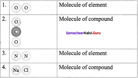 Samacheer Kalvi 7th Science Solutions Term 1 Chapter 3 Matter Around Us