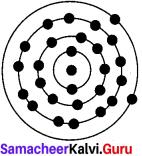 7th standard atomic structure Samacheer Kalvi