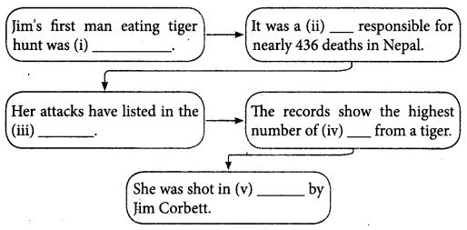 Jim Corbett A Hunter Turned Naturalist Book Back Answers Samacheer Kalvi 8th English