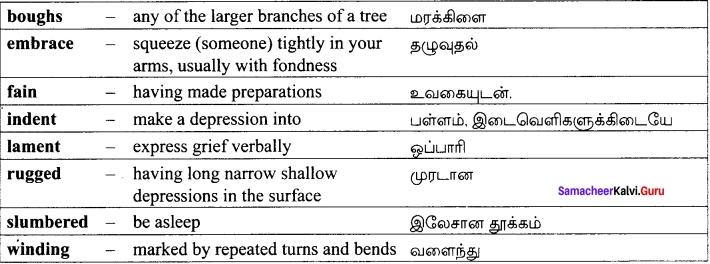 Our Casuarina Tree Class 12 Samacheer Kalvi 12th English Solutions Poem Chapter 2