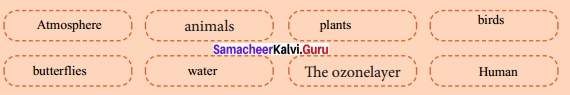 Samacheer Kalvi 12th English Solutions Supplementary Chapter 5 All Summer in a Day img-2