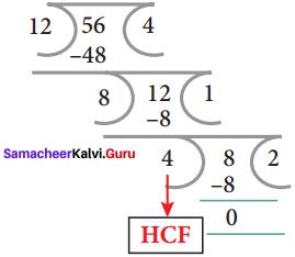 Samacheer Kalvi 8th Maths Solutions Term 2 Chapter 4 Information Processing Ex 4.2 6