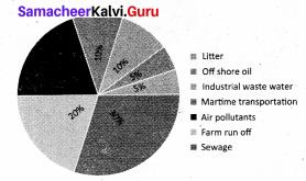 Samacheer Kalvi 8th Maths Solutions Term 3 Chapter 4 Statistics Ex 4.1 7