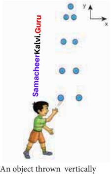 Physics Chapter 2 Kinematics Answers Samacheer Kalvi