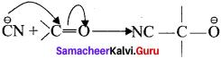 Samacheer Kalvi 11th Chemistry Chapter 11 Fundamentals of Organic Chemistry