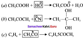 Samacheer Kalvi 11th Chemistry Solutions Chapter 12 Basic Concepts of Organic Reactions