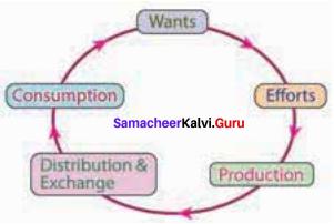 11th Economics Chapter 1 Book Back Answers Samacheer Kalvi