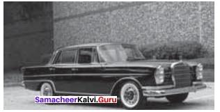 A Shot In The Dark Paragraph Samacheer Kalvi 11th