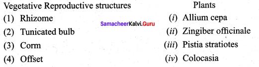 12th Botany 1st Lesson Samacheer Kalvi