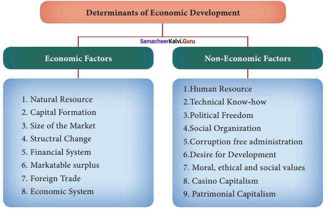Samacheer Kalvi 12th Economics Solutions Chapter 11 Economics of Development and Planning